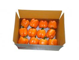 주황파프리카(2kg/특/1박스)